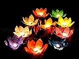 Schwimmlaterne Lotusblüte mit Teelicht - in verschiedenen Farben