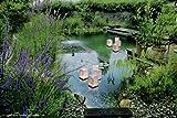 """Wasserlaterne """"Luminaria"""" – schwimmende Papierlaterne im 4er Pack - 2"""