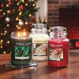 Yankee Candle Glaskerze, klein, Christmas Cookie - 9