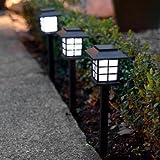 Set LED Solar Laternen in mehren Abpackungen - inkl. Erdspieße (Höhe 28cm)