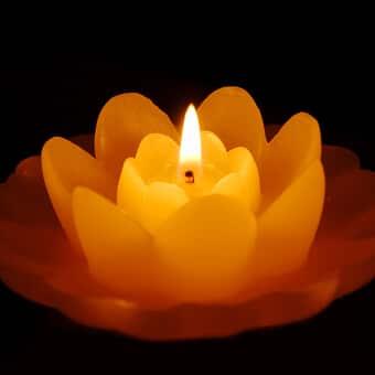 Lotusblütenkerze