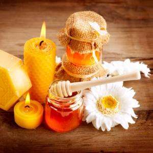 Viele Bienenprodukte (Wachskerze, Wachs, Blüten und Honig)