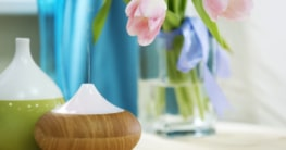 Zwei elektrische Aroma Vernebler neben einem Strauß Tulpen