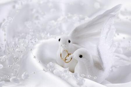 Zwei weiße Tauben mit den Eheringen im Schnabel - Zeichen für lebenslange Treue
